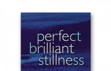 Perfect Brilliant Stillness